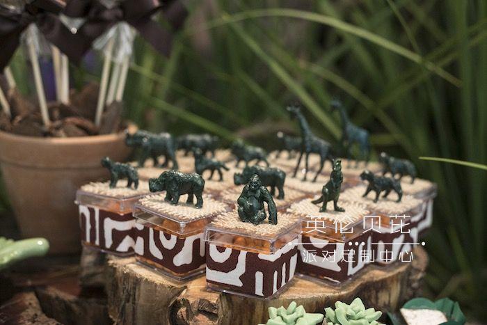 Safari Animal Favor Boxes from a Lion King Birthday Party on Kara