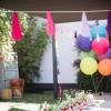 美洲鸵主题生日party
