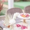 热带缤纷婚礼