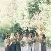 红杉树下的亲密婚礼