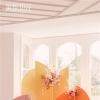色彩艳丽的婚礼布置
