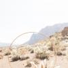 沙漠里的私奔婚礼策划
