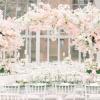 樱花主题派对策划